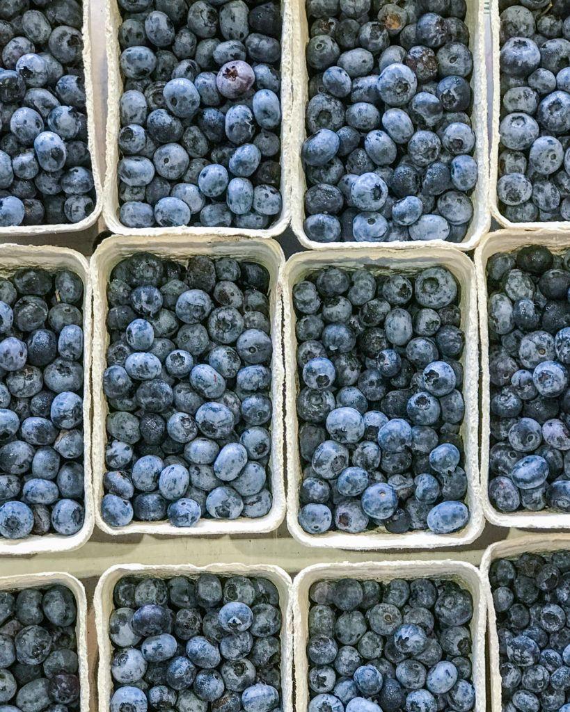 juli sæson blåbær